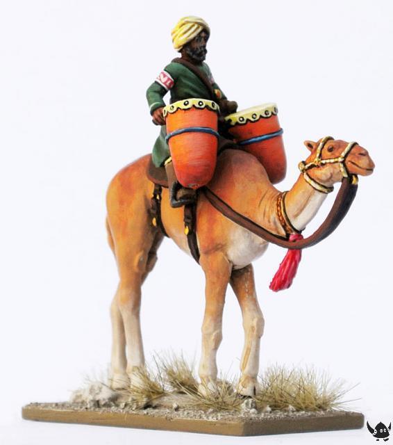 Saracen camel drums